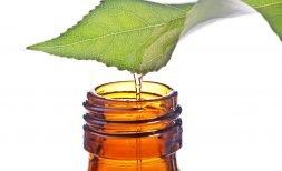 organic oil product