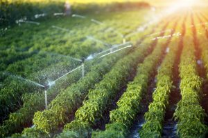 Farming irrigation system