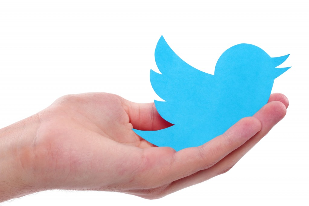 twitter icon on hand